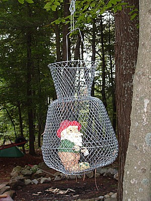a trapped garden gnome