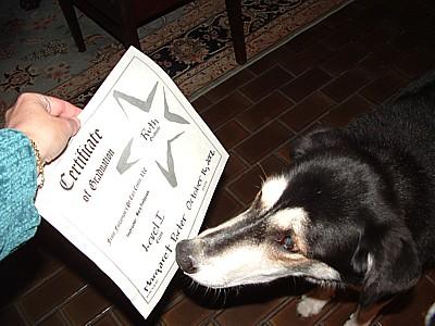 Lola is impressed